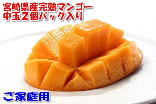 【訳あり】宮崎 マンゴー ご家庭用 Lサイズ中玉2玉 パック入