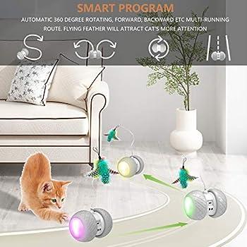 BENTOPAL Jouet automatique pour chat - Jouet interactif avec plumes - Jouet électrique pour chat d'intérieur avec plumes - 2020 mise à niveau (jouet pour chat automatique)