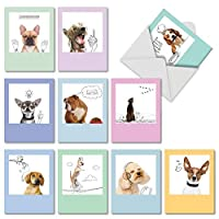 The Best Card Company - 10 Blank Dog Greeting Cards for All Occasions (4 x 5.12 Inch) - Dogs & Doodles M6582OCB [並行輸入品]