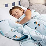 Kids Weighted Blanket 5 Pounds - Just Like a Hug from Mom | 36'x48' | 5lb Calming Comforter for Toddler | Cool Blue