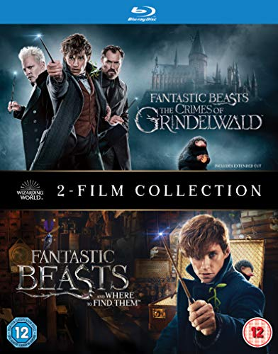 Fantastic Beasts: [2 Film Collection] [Blu-ray] [2018] [2019] [Region Free]