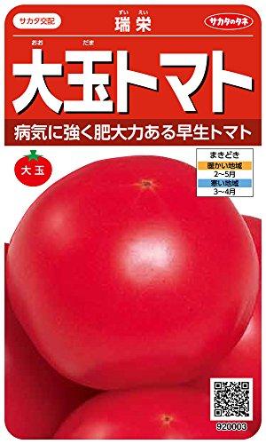 サカタのタネ 実咲野菜0003 大玉トマト 瑞栄 00920003