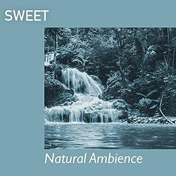 Sweet Natural Ambience, Vol. 3