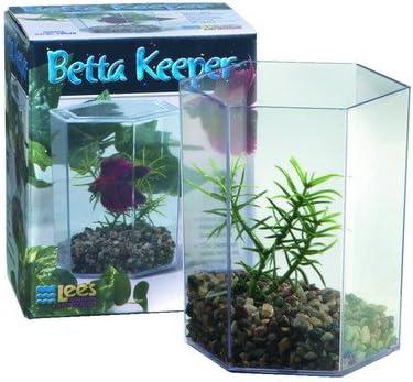 Large Aquarium Columbus Mall Betta Translated Keeper Set 2 Tank of