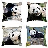Katigan Fundas de Almohada de Panda Lindo Fundas de CojíN de Regalo de la Serie Animal para el Sofá del Hogar Funda de Almohada Decorativa 45X45Cm
