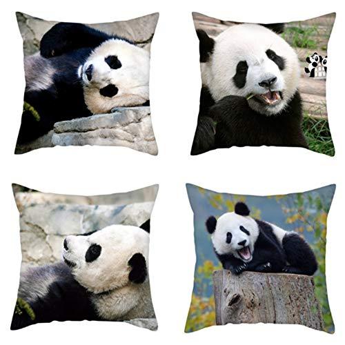 Kuinayouyi Fundas de Almohada de Panda Lindo Fundas de CojíN de Regalo de la Serie Animal para el Sofá del Hogar Funda de Almohada Decorativa 45X45Cm