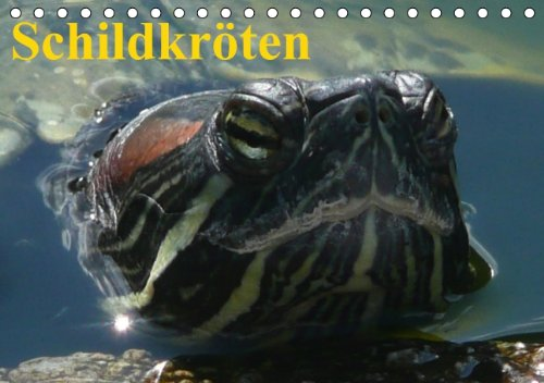 Schildkröten (Tischkalender immerwährend DIN A5 quer)