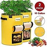 JOYXEON Sacchi per Coltivazione di Patate, 10 galloni per Piante da Coltivazione Vasi in T...