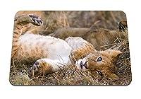 26cmx21cm マウスパッド (捕食者の赤ちゃんの好奇心) パターンカスタムの マウスパッド