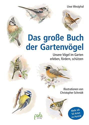 Das große Buch der Gartenvögel: Unsere Vögel im Garten erleben, fördern, schützen: Unsere Vgel im Garten erleben, frdern, schtzen