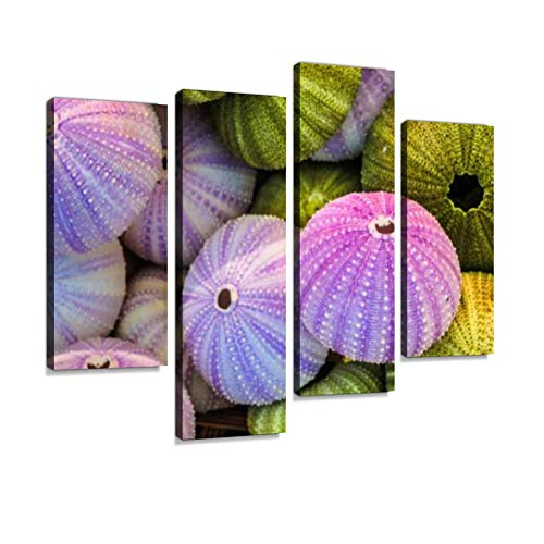Sea Urchin Shells Canvas Wall Art Hanging Paintings Modern Artwork Abstract Picture Prints Home Decoration Gift Unique Designed Framed 4 Panel
