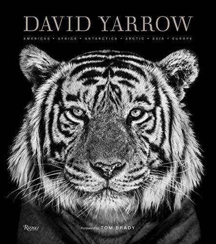 David Yarrow Photography: Americas Africa Antarctica Arctic Asia Europe