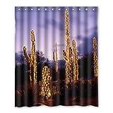 Dalliy Brauch Saguaro Wasserdicht Polyester Shower Curtain Duschvorhang 152cm x 183cm