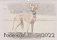 Podencos 2022 (Wandkalender 2022 DIN A3 quer): Podencos - Wunderschoen gestalteter Kalender. Jedes Monatsmotiv gleicht einem kleinen Kunstwerk. (Monatskalender, 14 Seiten )