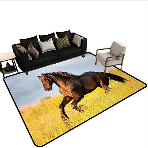 MsShe Transparant gedrukte deurmat Vakantie, Uitzicht op Mooie Hangmat met Palmen door de Oceaan Sandy Shore Exotic Artsy Print,Groene Crème Blauw