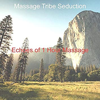 Echoes of 1 Hour Massage