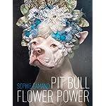 Pit-Bull-Flower-Power
