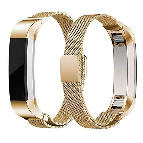 GABRIEL Correa de Repuesto de Acero Inoxidable con Cierre magnético para Fitbit Alta/Fitbit Alta HR Fitness Tracker, Color Dorado