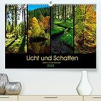 Licht und Schatten - Herbst im Suedschwarzwald (Premium, hochwertiger DIN A2 Wandkalender 2022, Kunstdruck in Hochglanz): Licht- und Farbspiele im herbstlichen Wald (Monatskalender, 14 Seiten )