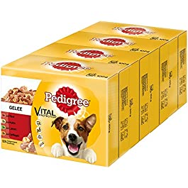Pedigree Vital Protection dog food with beef, chicken and lamb in jelly, 48 sachets (48 x 100 g)