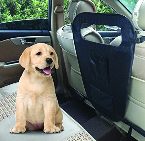 Coleman Car Front Seat Dog Barrier with Pocket Organizer, Vehicle Safety Barrier for Dogs - Black