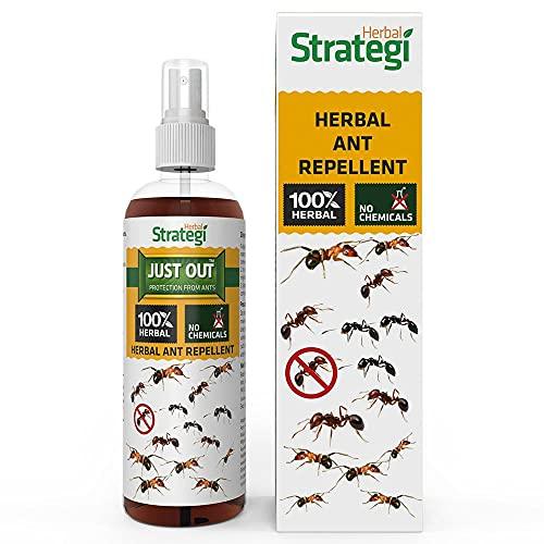 STRATEGI Herbal Ant Repellent Spray - 100ml