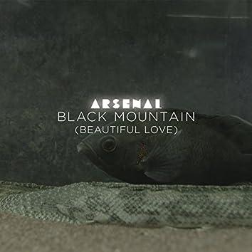 Black Mountain (Beautiful Love) (Radio Edit)