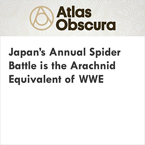 Japan's Annual Spider Battle is the Arachnid Equivalent of WWE cover art