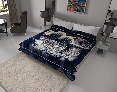 SOLARON Korean Super Thick Heavy Weight Ultra Silky Soft Mink Heavy Duty Reversible Blanket Bed comforters bedspreads Bedding Comforter King or Queen (Queen, 119 Wolf Blue)