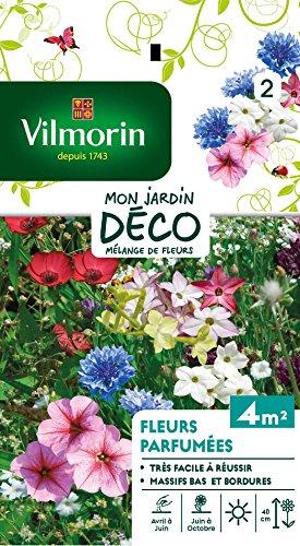 Vilmorin 5862942 Fleur parfumée Multicolore, 90 x 2 x 160 cm
