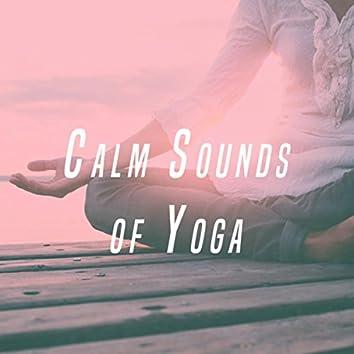 Calm Sounds of Yoga