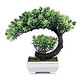 yoerm Small Artificial Bonsai Tree Fake Plants for Home Office Wall Book Shelf Room Decor (Size 9.5'x8.5')
