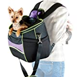 picture of dog being carried by a person using a pet backpack carrier