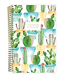 Planner with Cactus