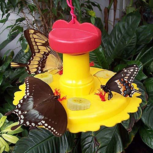 Songbird Essentials SE78200 Butterfly Feeder (Set of 1)