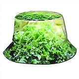 Sombrero de Cubo Transpirable Superior Plano Unisex Lechuga Verduras Ensalada Sombrero de Pescador de Verano
