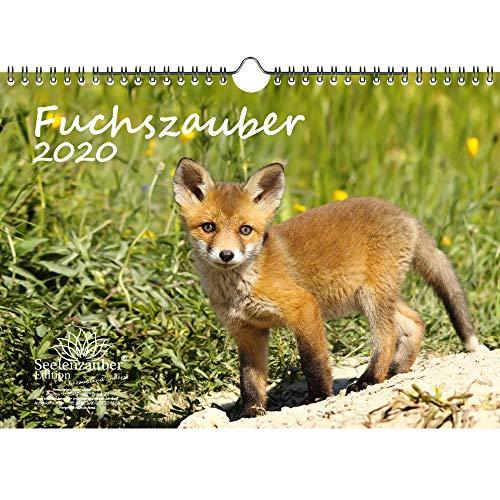 Fuchszauber DIN A4 Kalender 2020 Fuchs und Füchse Geschenk-Set: Zusätzlich 1 Gruß- und 1 Weihnachtskarte - Seelenzauber