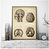 QYH Brain Medical Print Human Head Anatomy Vintage Illustration Poster Neurology Science Art Canvas Painting Picture Doctor Gift 40x50 cm No Frame