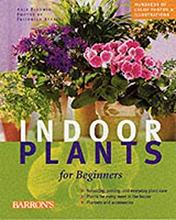 Indoor Plants for Beginners: Plant Care Basics, Choosing House Plants, Suggested Plants for Every Location
