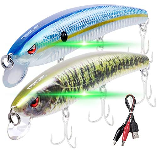 """TRUSCEND Fishing Lures Fishing Light Attractant 4.9"""" Rechargeable LED Minnow Long Casting Slow Sinking Flashing Vibrating Twitching Lures Freshwater Saltwater (2PCS BlueShad-Bass (Green Light))"""