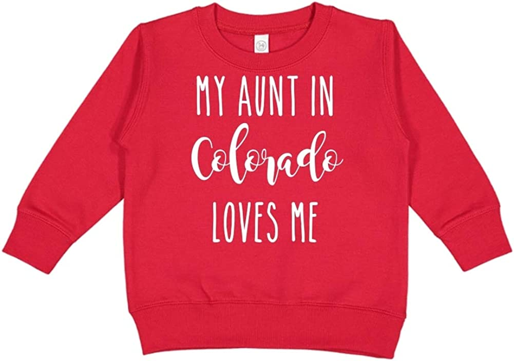 Toddler//Kids Sweatshirt My Aunt in Colorado Loves Me