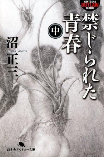 禁じられた青春〈中〉 (幻冬舎アウトロー文庫)