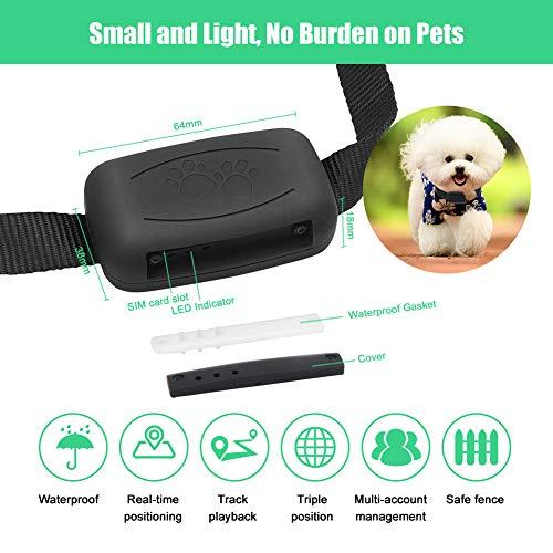 Zebbyee Localizzatore GPS per Animali Domestici, localizzatore di Cani da Gatto in Tempo Reale e Monitor di attività, Dispositivo di localizzazione per Cani di Gatto con Portata illimitata