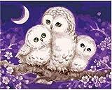 Pintura al óleo DIY Tres búhos Pintura por números Para lienzo niños adultos decoración set de regalo pintura acrílica 40x50cm (sin marco)