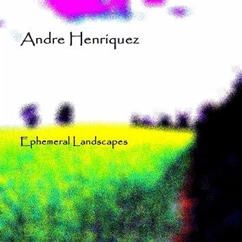 Ephemeral Landscapes