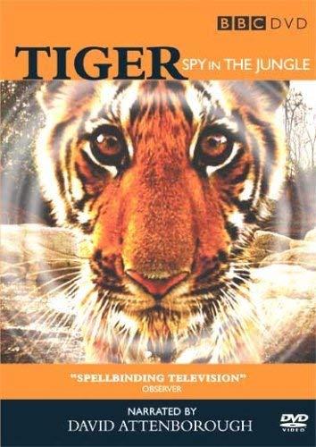 Tiger - Spy in...