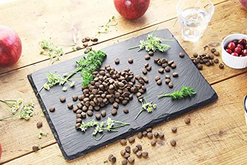 カナガンキャットフードチキン(1.5kg)全猫種全年齢対応グレインフリー穀物香料着色料不使用