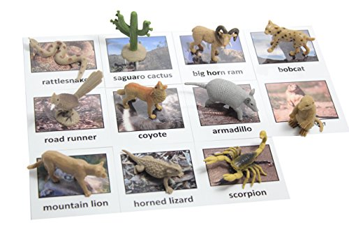 Curious Minds Busy Bags Montessori Desert Animal Match Cards and Figurines. Nomenclature Science Work