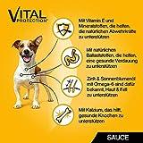 Pedigree Hundefutter in Sauce, 48 Beutel (4 x 12 x 100 g) - 6
