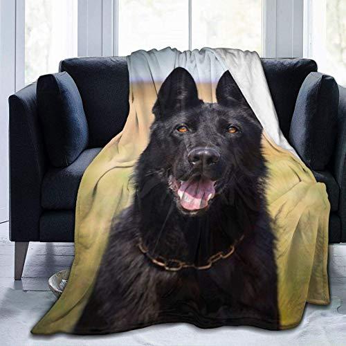 N \ A Manta de forro polar ultra suave, imágenes de perro pastor alemán negro, decoración del hogar, manta cálida para sofá cama, 20 x 60 pulgadas